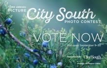 A graphic advertising voting for the 2019 Picture City South photo contest.